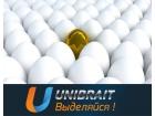 Unibrait (Юнибрайт)