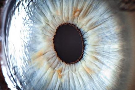 Идея для бизнеса с минимальными вложениями: тестирование по радужной оболочке глаза