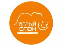 ФК Белый слон