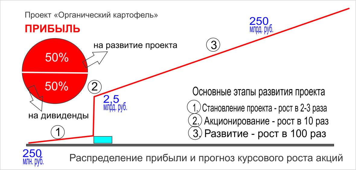 Схема показывает прогноз развития капитала от 250 млн. руб. (стартовый капитал) до 25 млрд. руб. (это всего 8% потребления). Ёмкость рынка позволяет расти дальше.